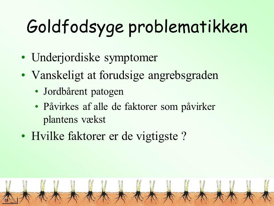 Goldfodsyge problematikken