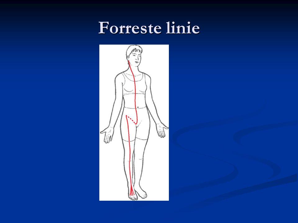 Forreste linie
