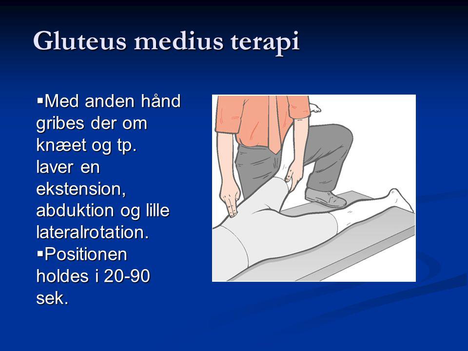 Gluteus medius terapi Med anden hånd gribes der om knæet og tp. laver en ekstension, abduktion og lille lateralrotation.
