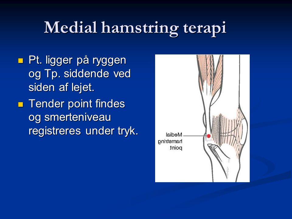 Medial hamstring terapi
