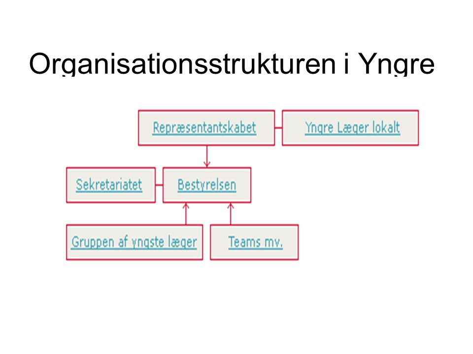 Organisationsstrukturen i Yngre Læger