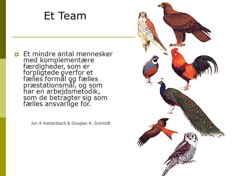 Et Team