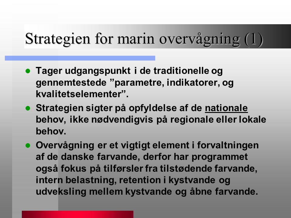 Strategien for marin overvågning (1)