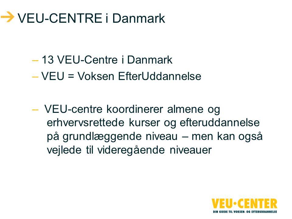 VEU-CENTRE i Danmark 13 VEU-Centre i Danmark