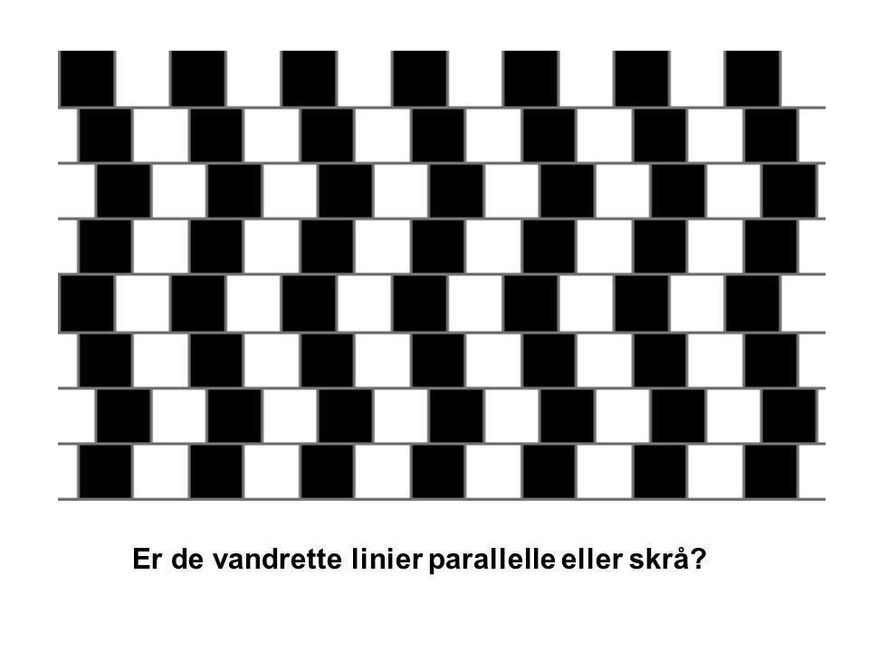 Er de vandrette linier parallelle eller skrå