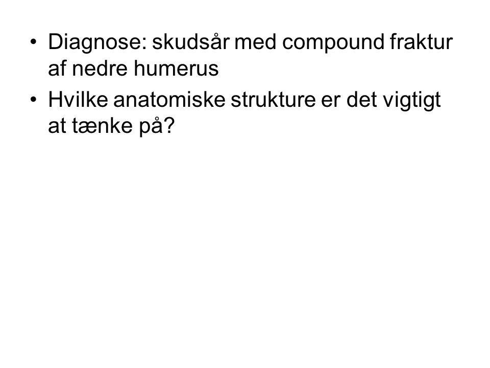 Diagnose: skudsår med compound fraktur af nedre humerus