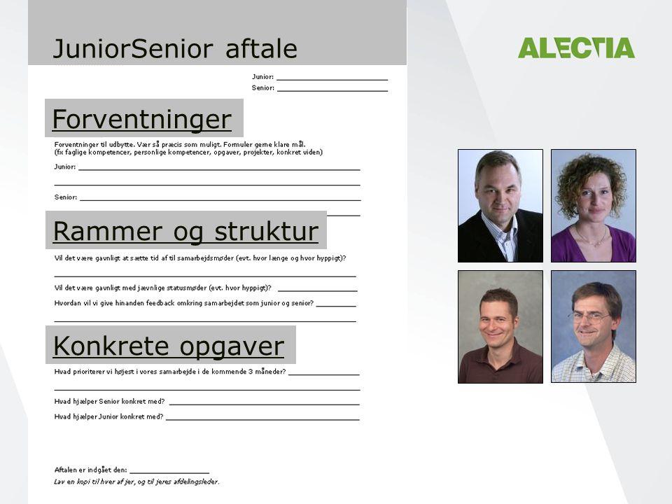 JuniorSenior aftale Forventninger Rammer og struktur Konkrete opgaver