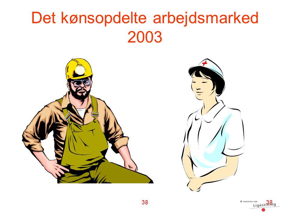 Det kønsopdelte arbejdsmarked 2003