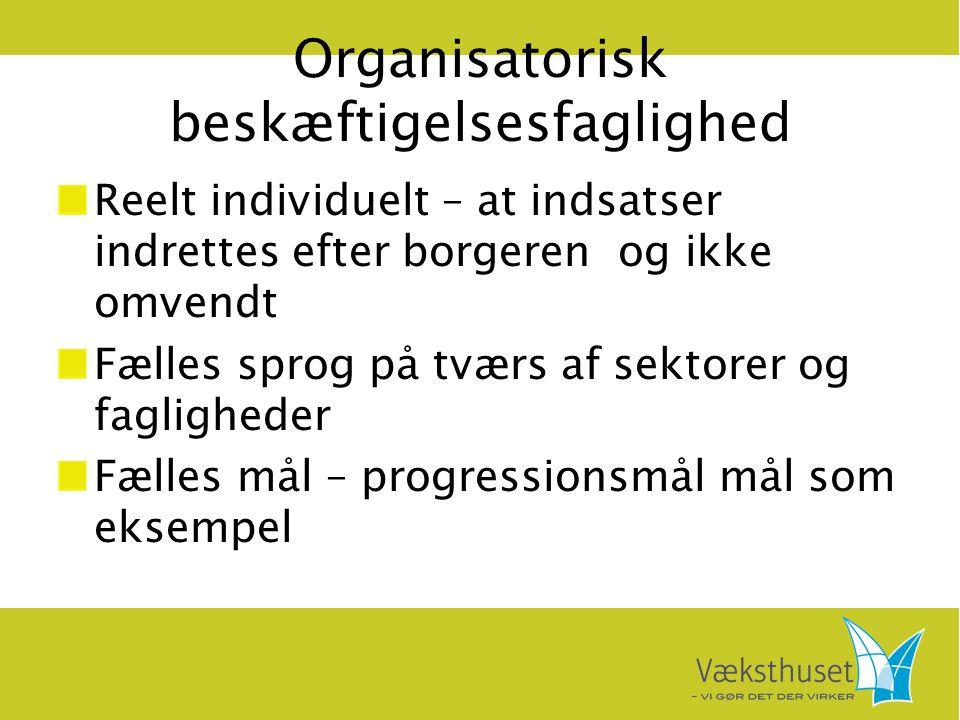 Organisatorisk beskæftigelsesfaglighed