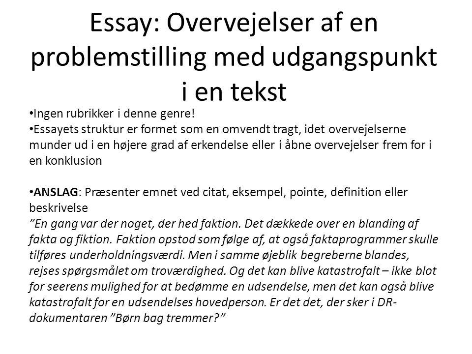 Essay: Overvejelser af en problemstilling med udgangspunkt i en tekst