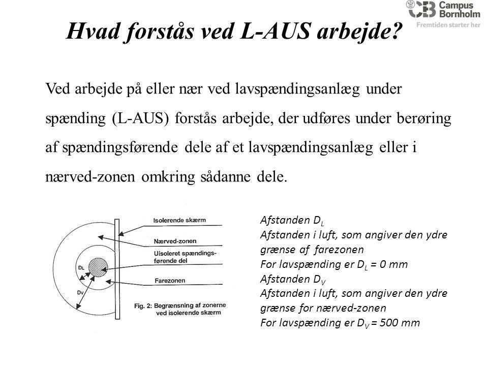 Hvad forstås ved L-AUS arbejde