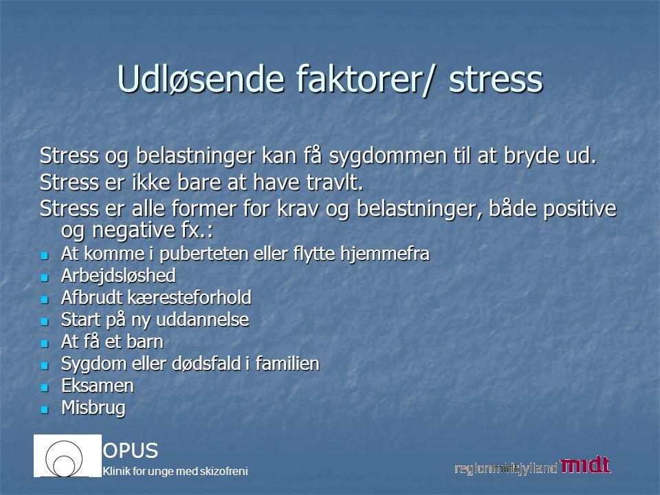 Udløsende faktorer/ stress