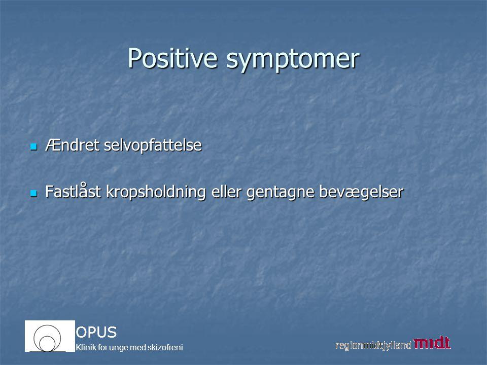 Positive symptomer Ændret selvopfattelse