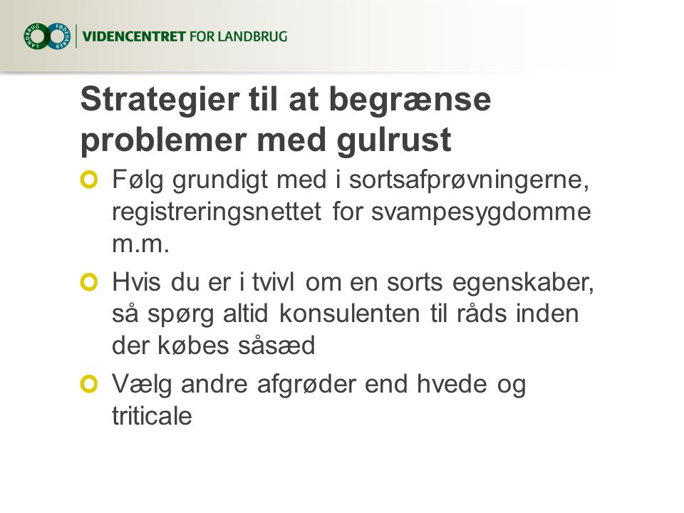 Strategier til at begrænse problemer med gulrust