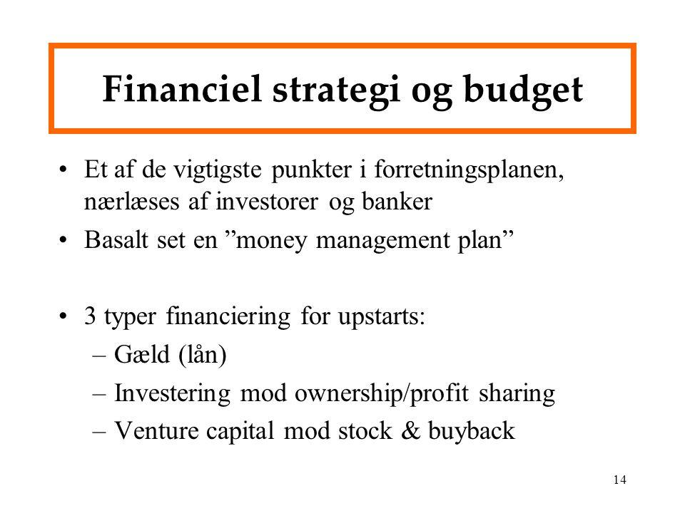 Financiel strategi og budget