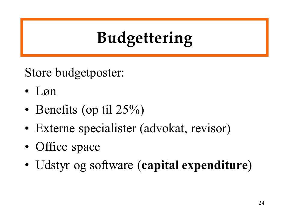 Budgettering Store budgetposter: Løn Benefits (op til 25%)