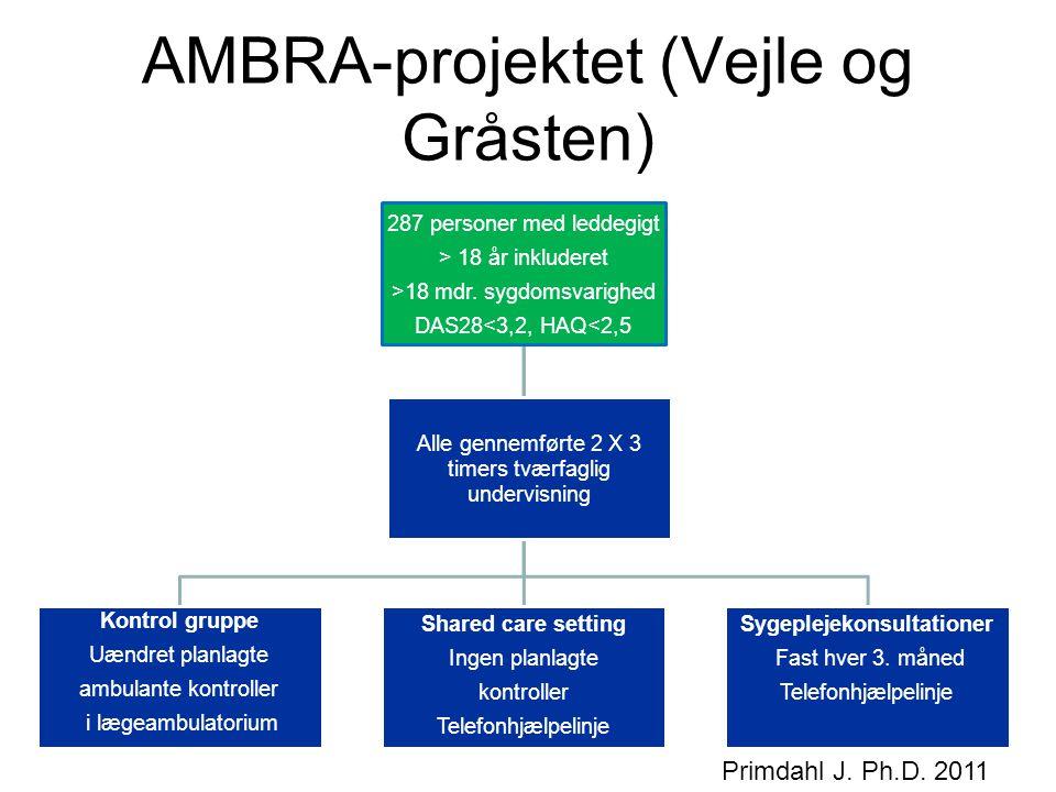 AMBRA-projektet (Vejle og Gråsten)