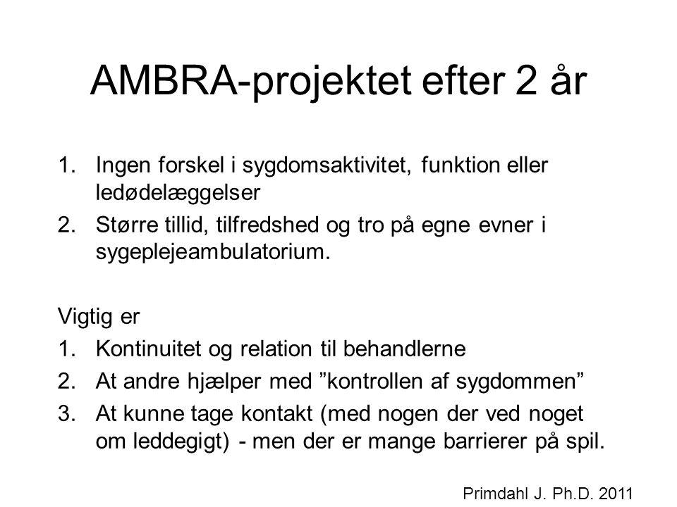AMBRA-projektet efter 2 år