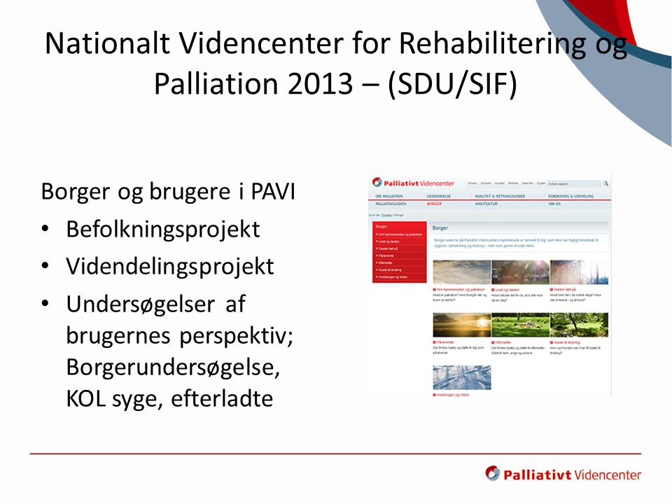Nationalt Videncenter for Rehabilitering og Palliation 2013 – (SDU/SIF)