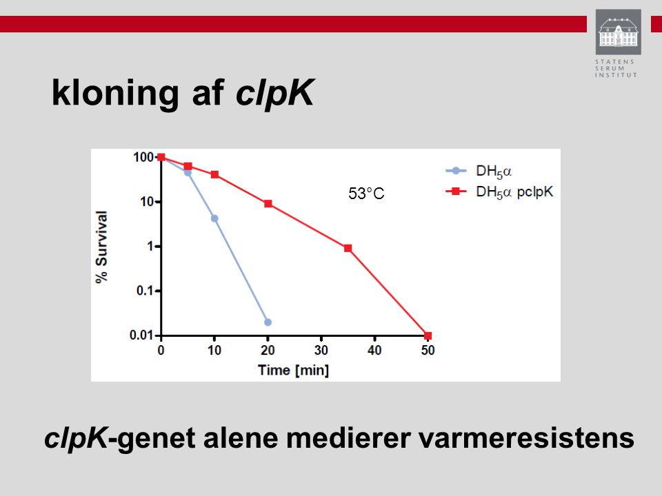 kloning af clpK 53°C clpK-genet alene medierer varmeresistens