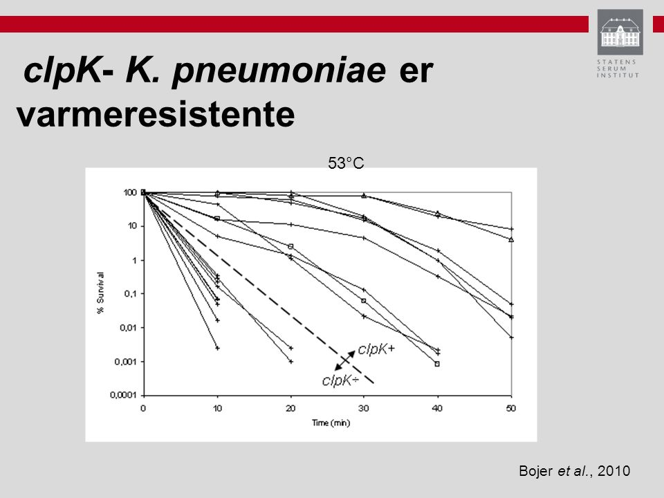 clpK- K. pneumoniae er varmeresistente
