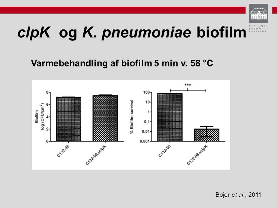 Varmebehandling af biofilm 5 min v. 58 °C