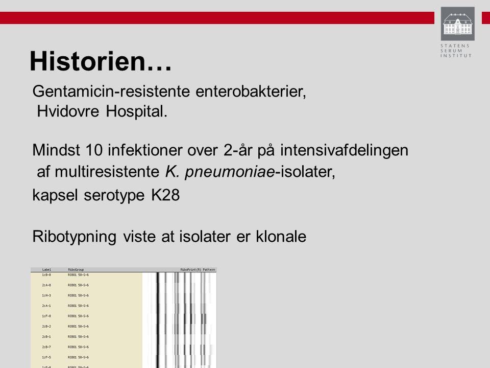 Historien… Gentamicin-resistente enterobakterier, Hvidovre Hospital.