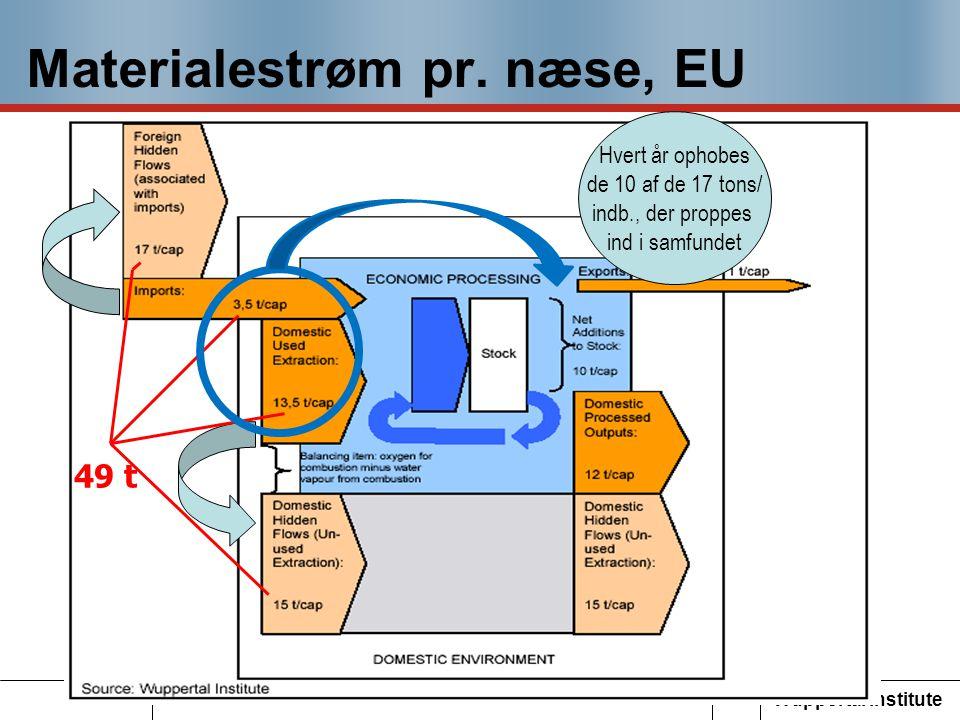 Materialestrøm pr. næse, EU