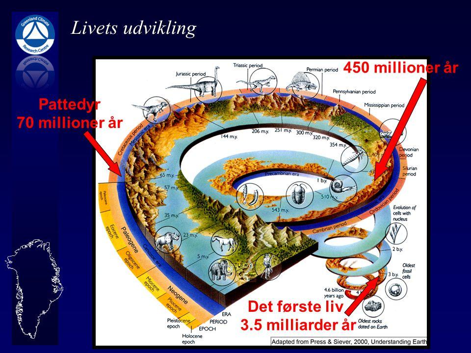 Livets udvikling 450 millioner år Pattedyr 70 millioner år