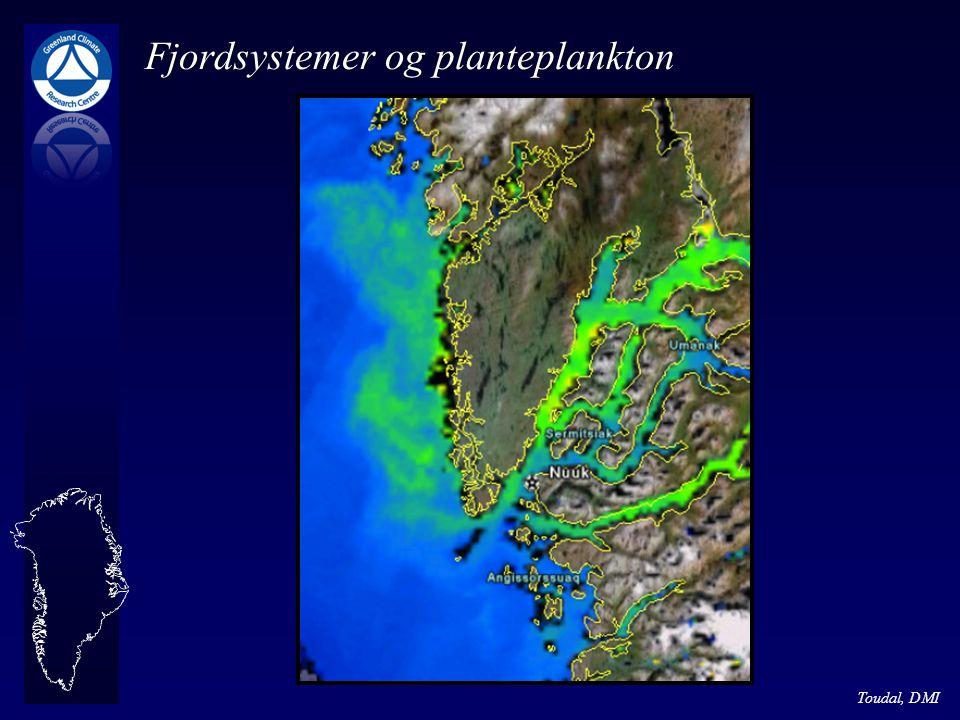 Fjordsystemer og planteplankton