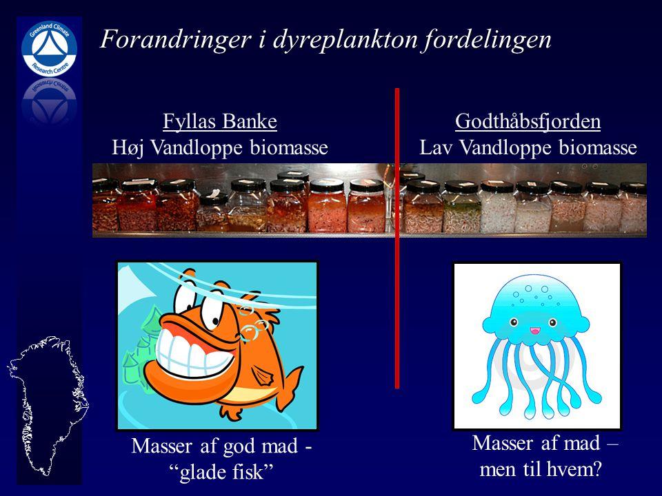 Forandringer i dyreplankton fordelingen