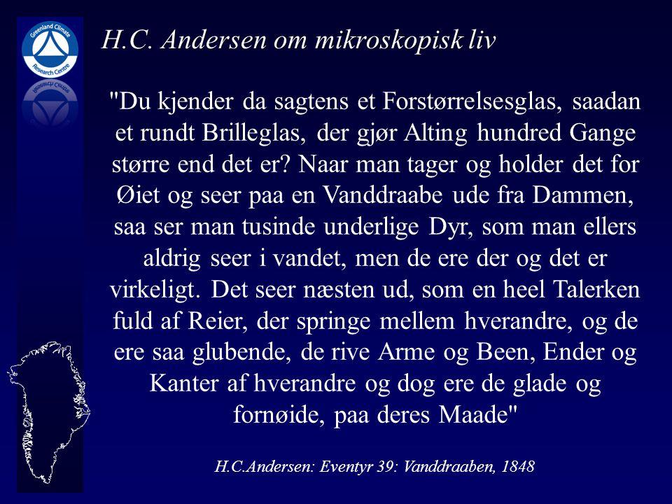 H.C. Andersen om mikroskopisk liv