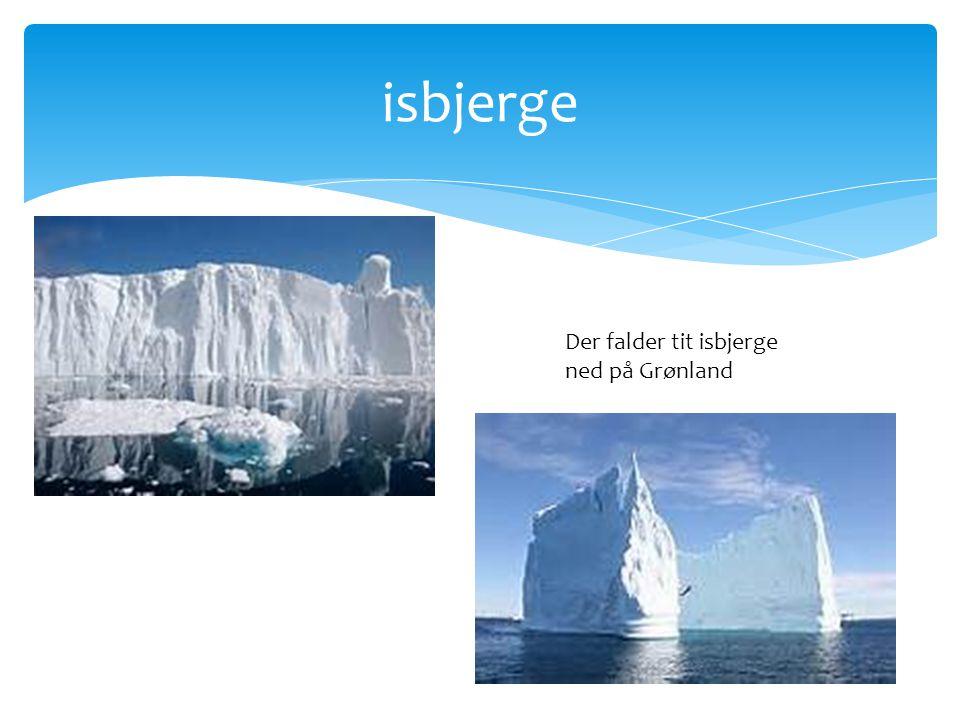 isbjerge Der falder tit isbjerge ned på Grønland