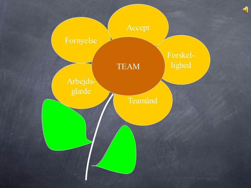 Accept Fornyelse Forskel- lighed TEAM Arbejds- glæde Teamånd