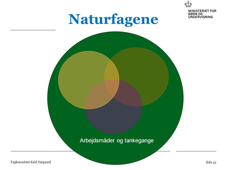 Naturfagene Arbejdsmåder og tankegange Fagkonsulent Keld Nørgaard