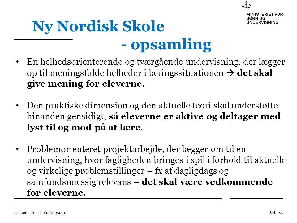 Ny Nordisk Skole - opsamling