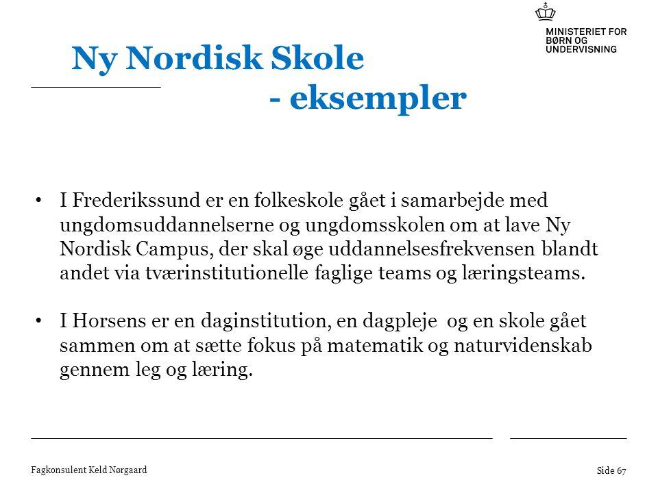 Ny Nordisk Skole - eksempler