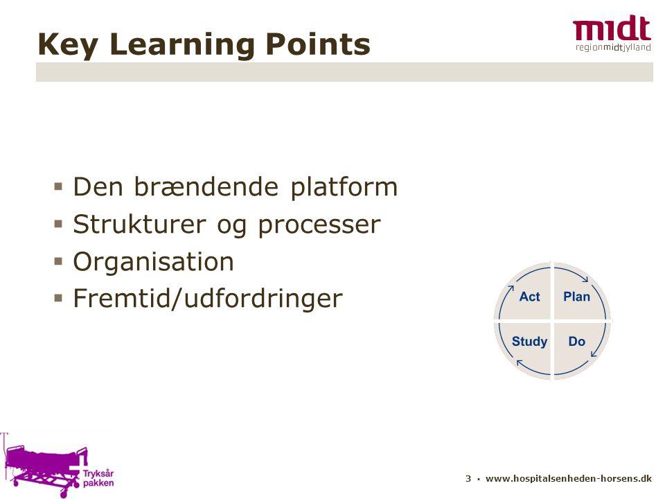 Den brændende platform Strukturer og processer Organisation