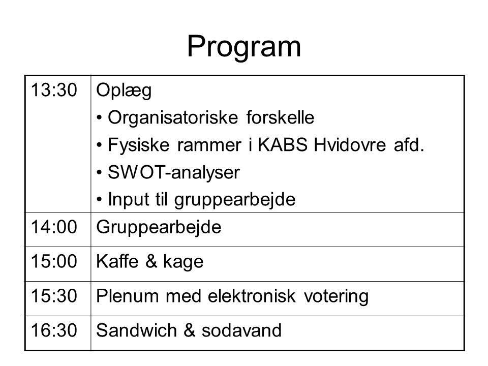 Program 13:30 Oplæg Organisatoriske forskelle