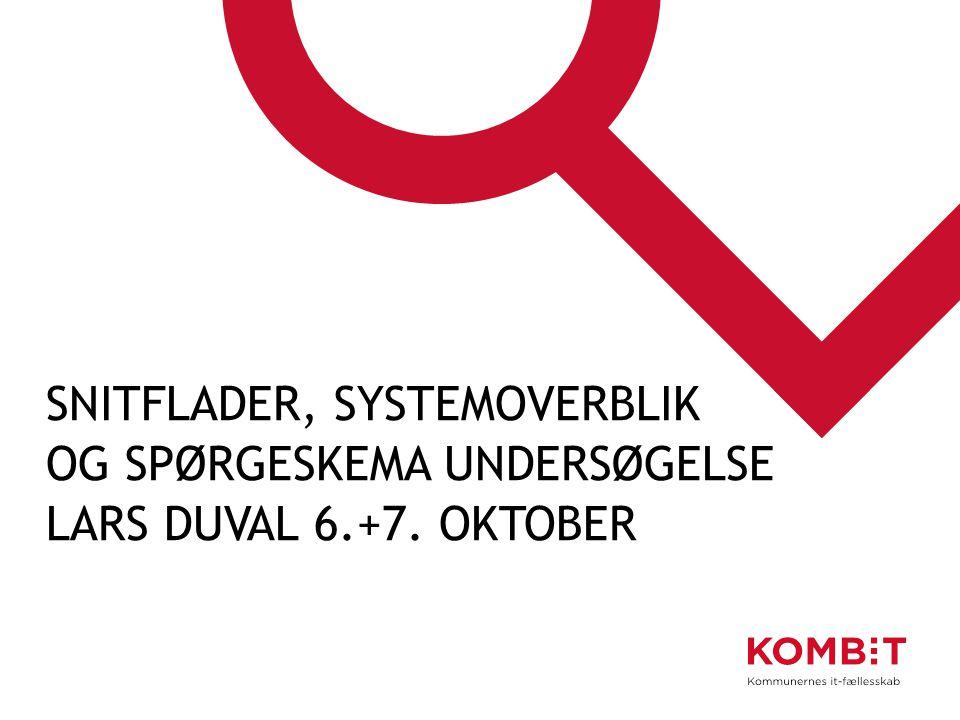 Snitflader, systemoverblik og spørgeskema undersøgelse Lars Duval 6.+7. oktober