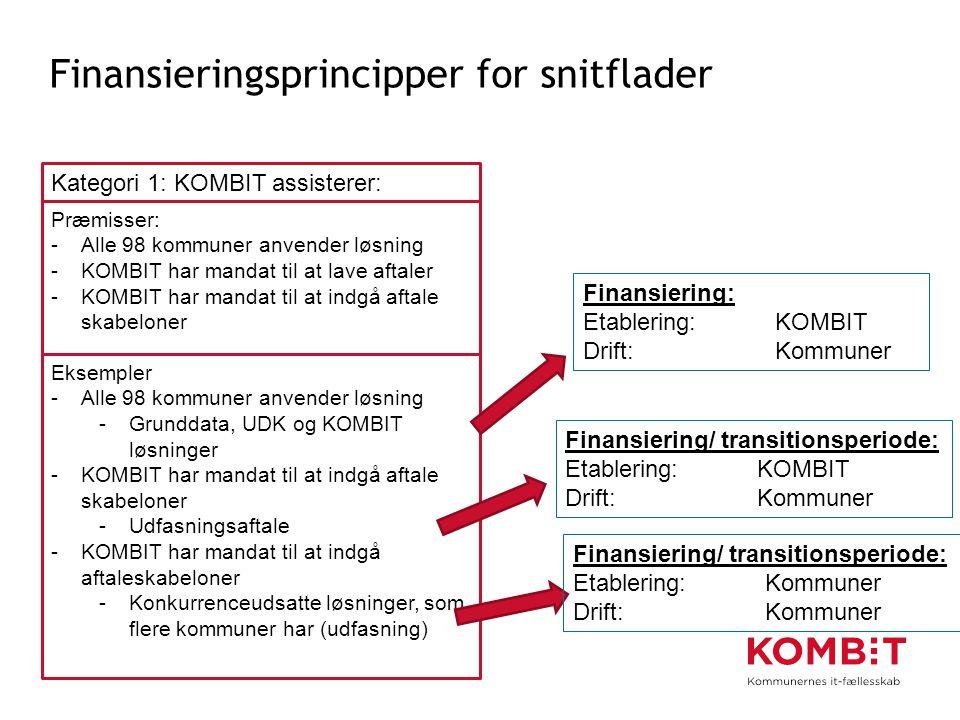 Finansieringsprincipper for snitflader
