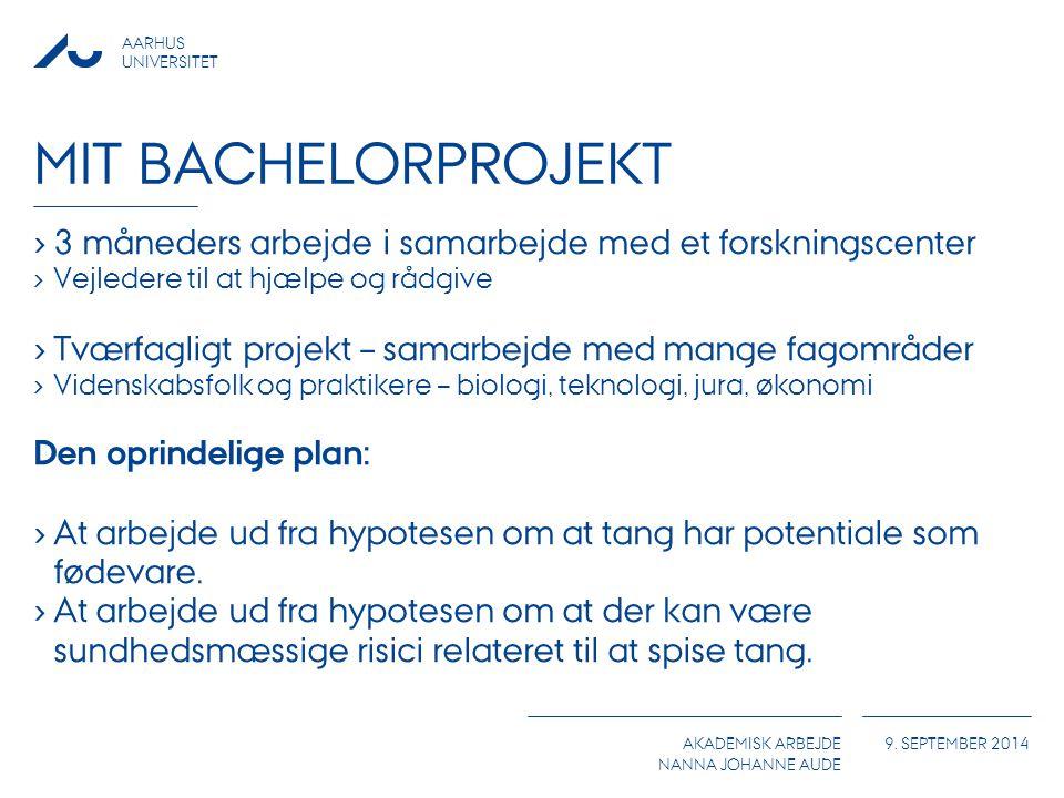 Mit Bachelorprojekt 3 måneders arbejde i samarbejde med et forskningscenter. Vejledere til at hjælpe og rådgive.