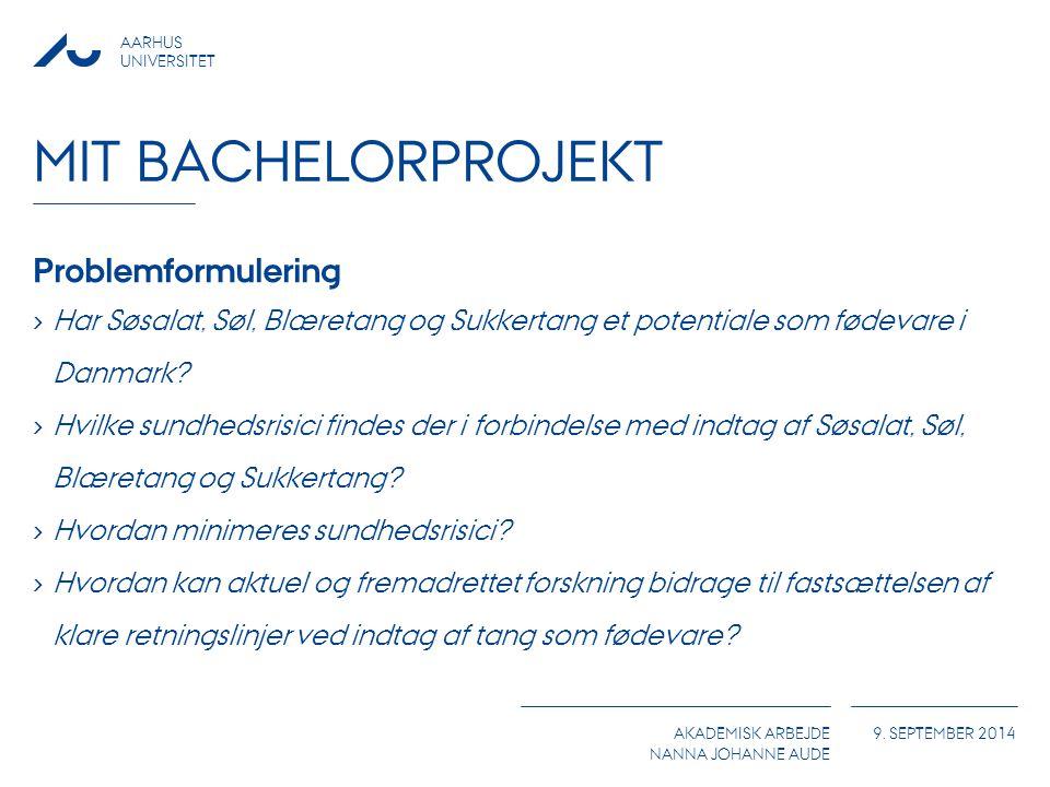 Mit Bachelorprojekt Problemformulering