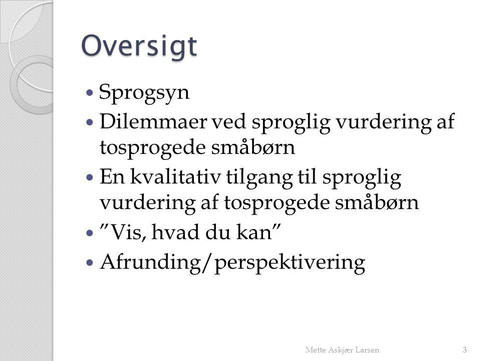 Oversigt Sprogsyn. Dilemmaer ved sproglig vurdering af tosprogede småbørn. En kvalitativ tilgang til sproglig vurdering af tosprogede småbørn.