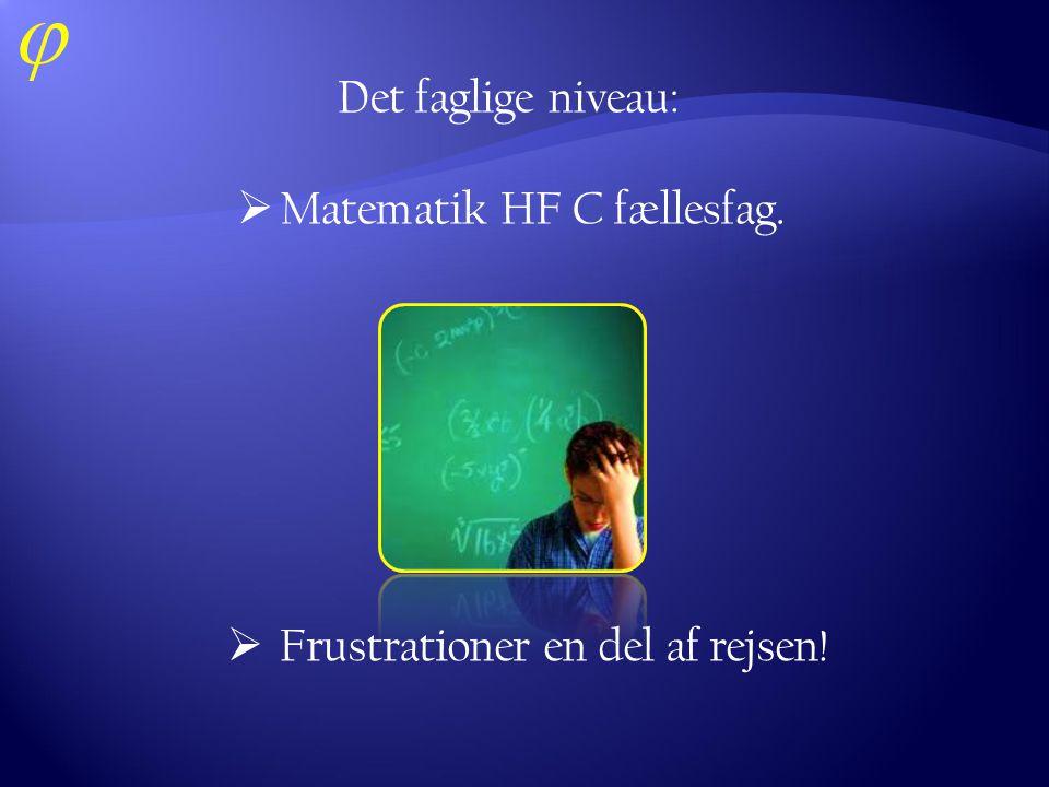 Det faglige niveau: Matematik HF C fællesfag. Frustrationer en del af rejsen!