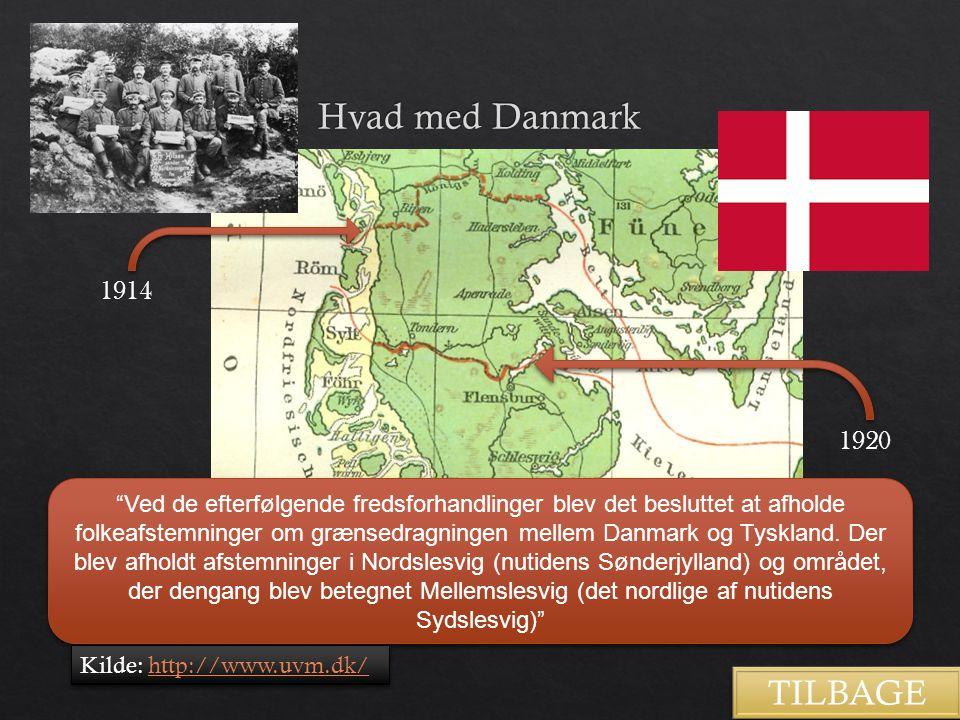 Hvad med Danmark TILBAGE 1914 1920