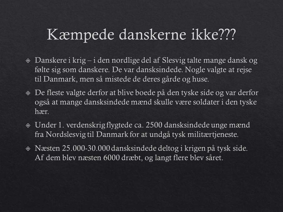 Kæmpede danskerne ikke