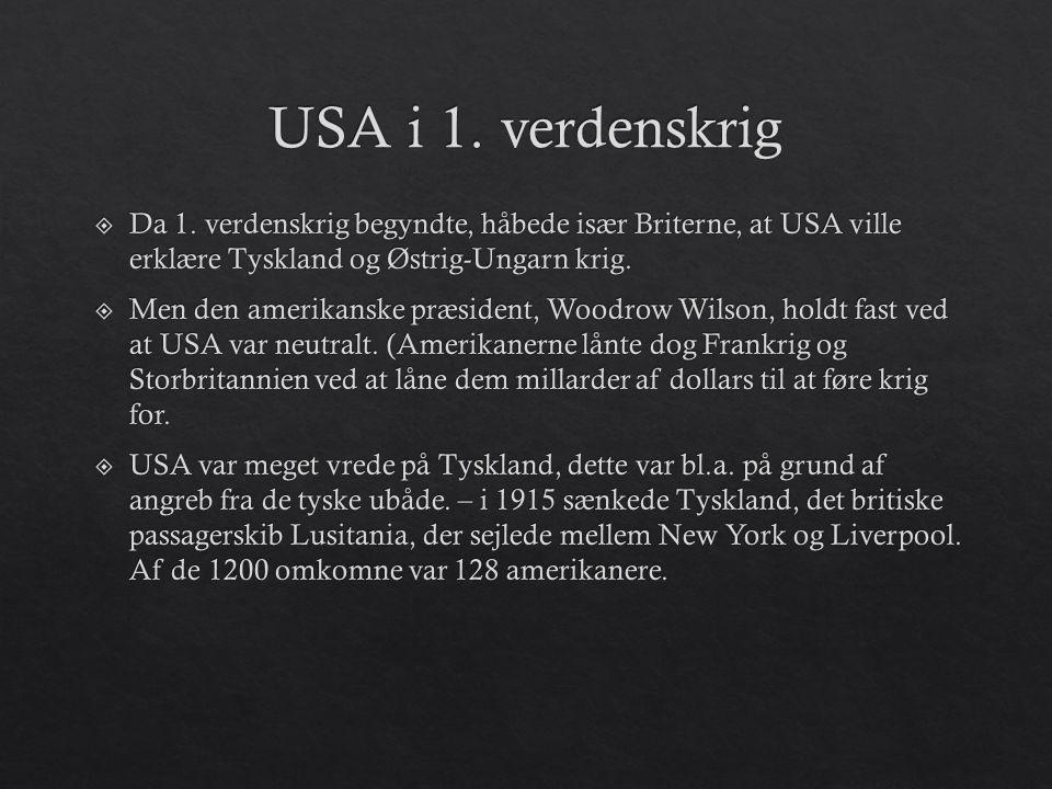 USA i 1. verdenskrig Da 1. verdenskrig begyndte, håbede især Briterne, at USA ville erklære Tyskland og Østrig-Ungarn krig.