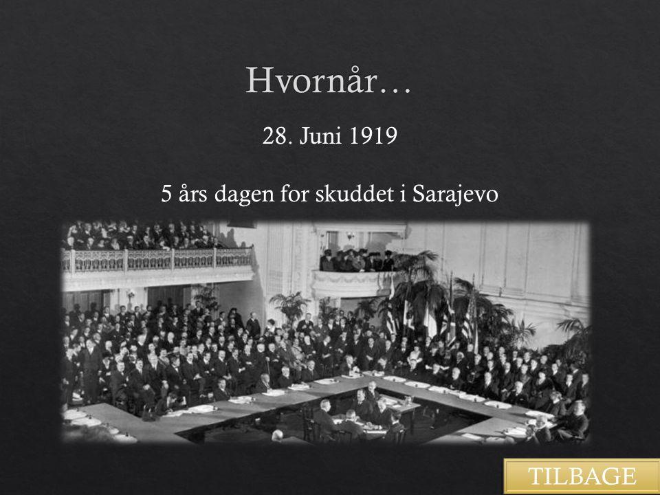 5 års dagen for skuddet i Sarajevo