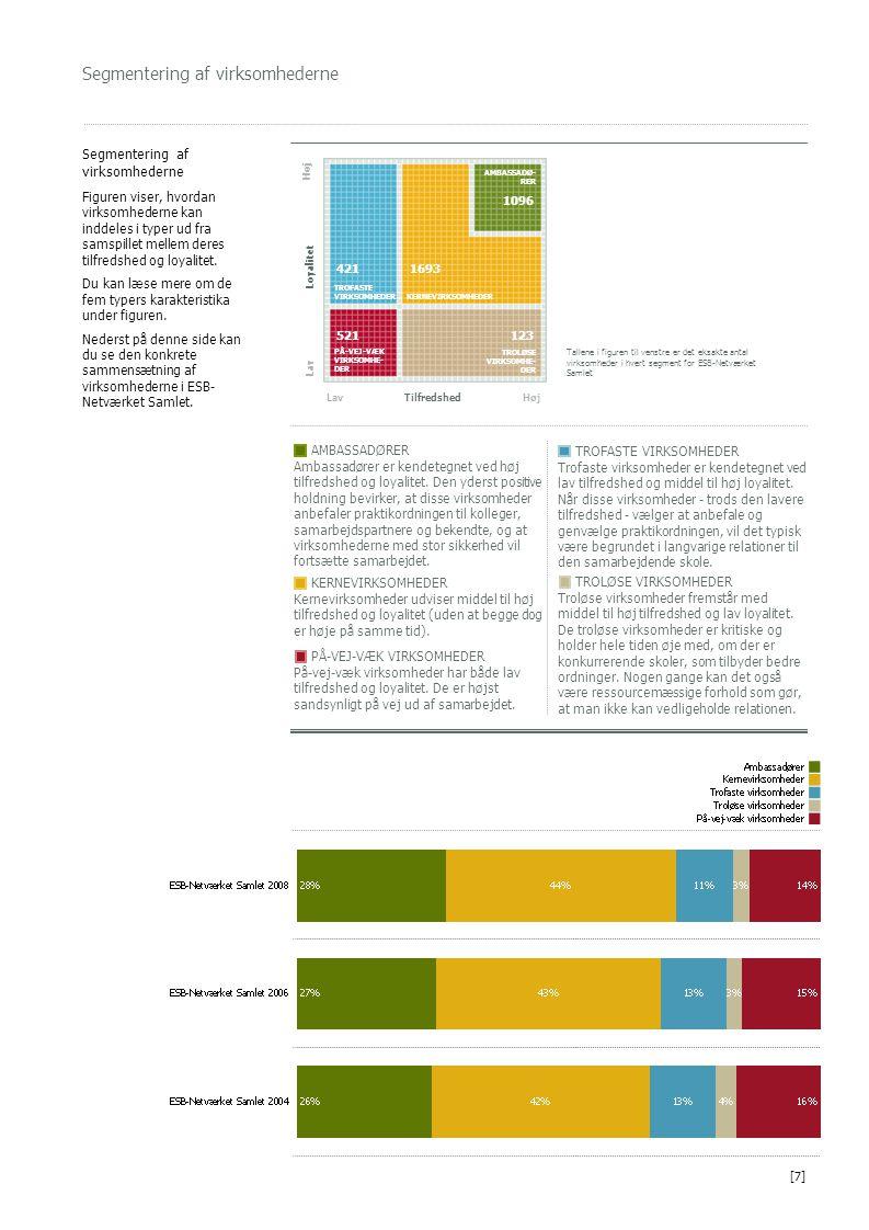 Segmentering af virksomhederne